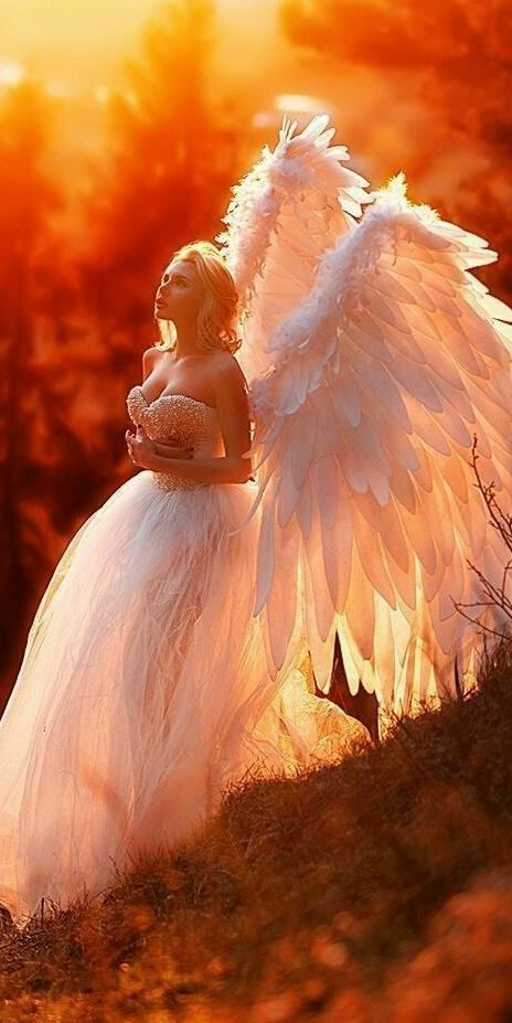 """Watch """"Hark! The Herald Angels Sing (Live At The Helix In Dublin…"""" on YouTube"""