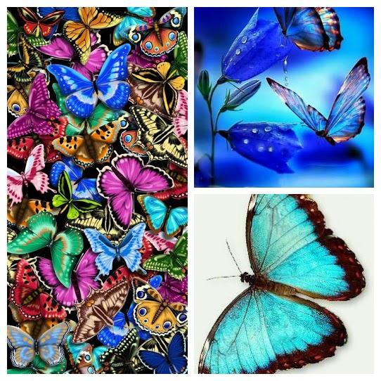 """Watch """"Butterfly Dance – Yanni"""" on YouTube"""