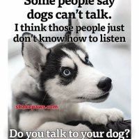 Thought for the Day💥   Listening skills will serve you well in life💥 If you need to overtalk buy yourself a puppy 💥💥💥