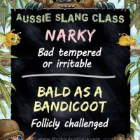 Today's Aussie Slang Lesson: A bloke may get a bit 'narky' if someone points out that he is 'bald as a bandicoot'.