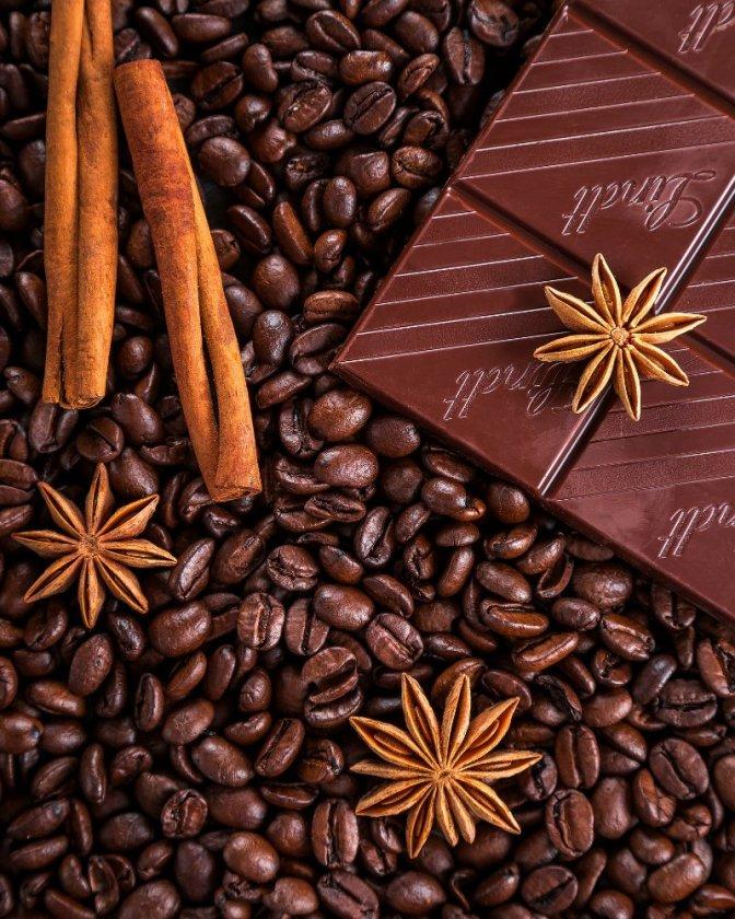 Yummy CHOCOLATE facts 🤗😊😁