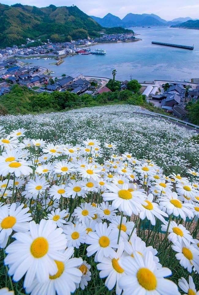 ~ Dream Land – Christina Rossetti  ~ Famous Poets